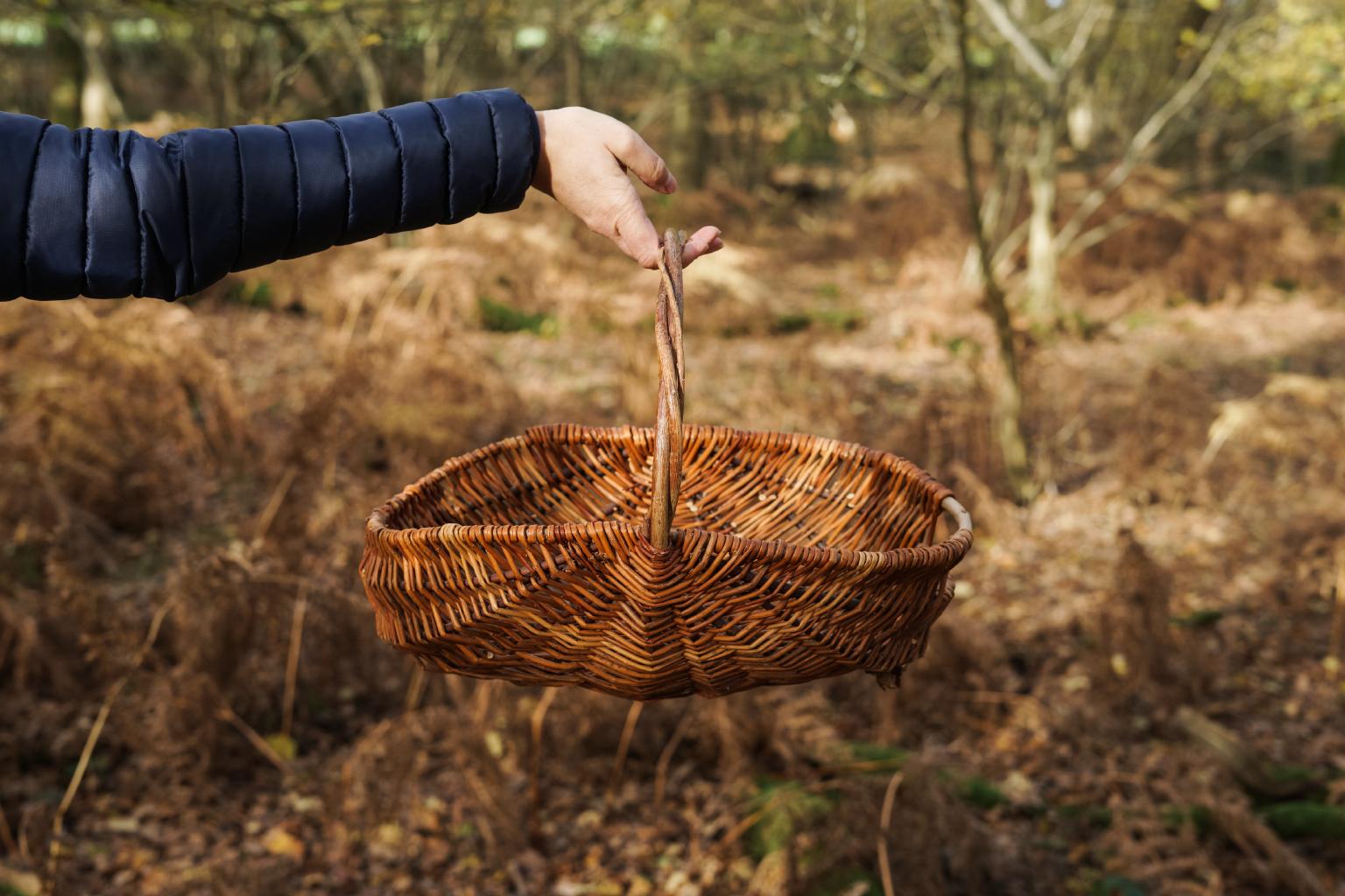Oval frame basket 1