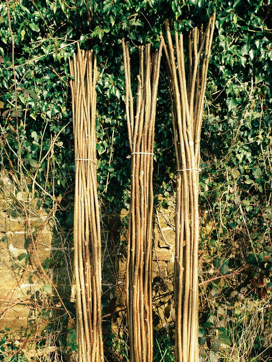 Hazel canes for plant support at Wild Sussex